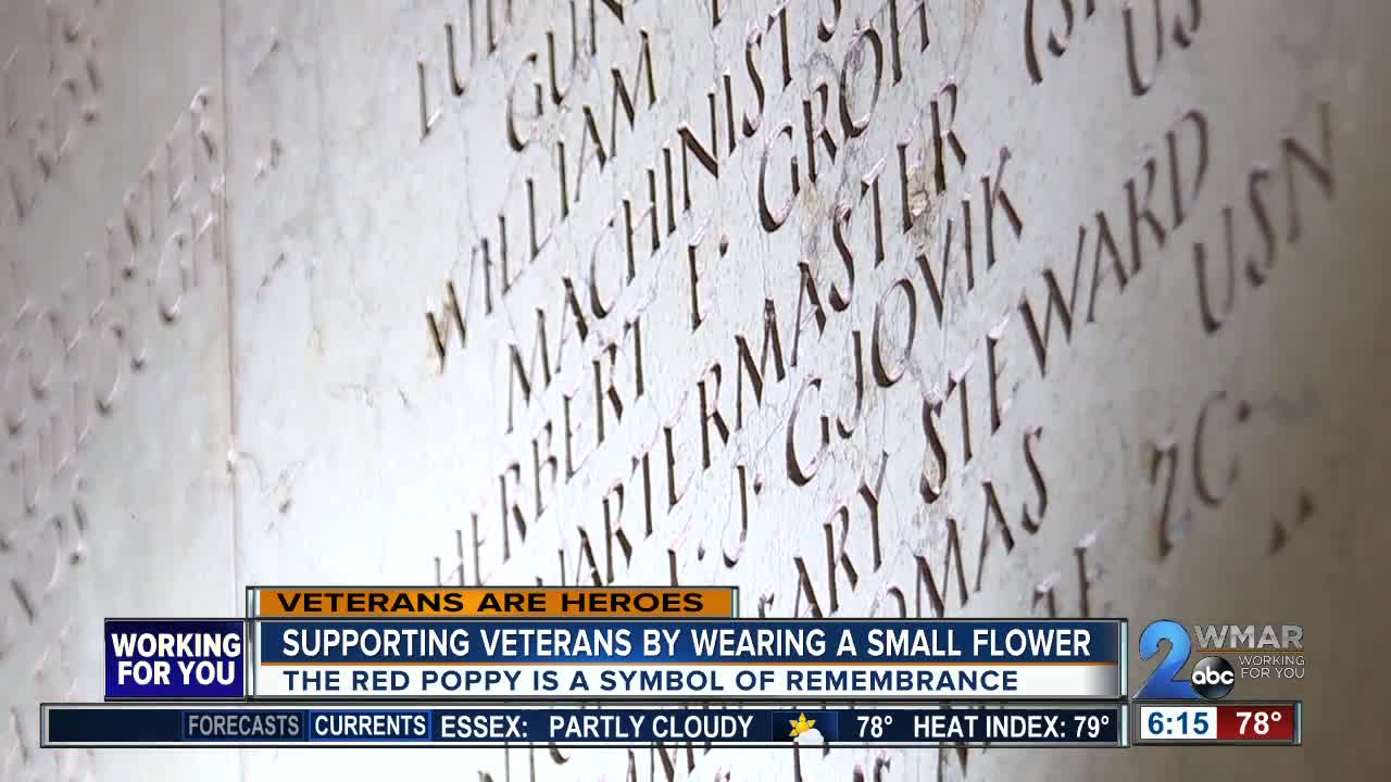 The Red Poppy The Meaning Of The Flower Of Remembrance Wmar2news