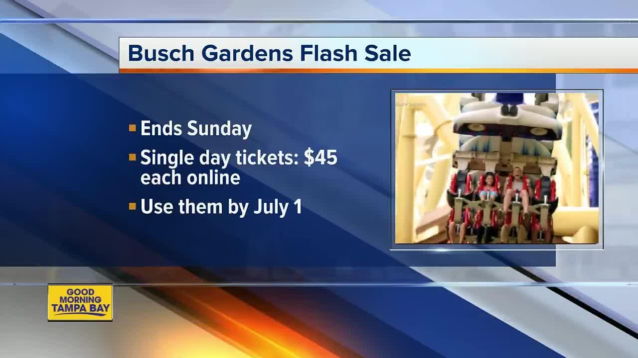 U0027Salute To Summeru0027 Flash Sale: Busch Gardens, Adventure Island Admission On  Sale Until June 3   Abcactionnews.com WFTS TV